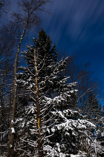 wintermoon2